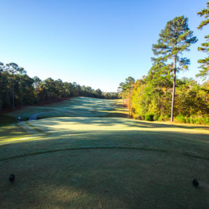 Golf at Savannah Lakes Village