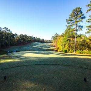Golf at Savannah Lakes Village